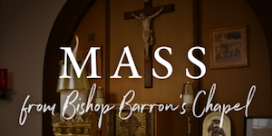 Link to Daily Mass from Bishop Barron's Chapel